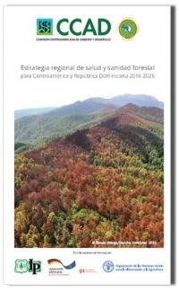 Países de Centro América y República Dominicana presentan instrumento de planificación estratégico para el control de plagas forestales